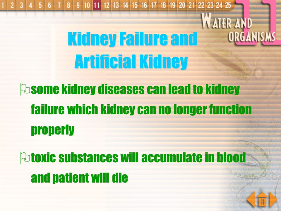 Kidney Failure and Artificial Kidney