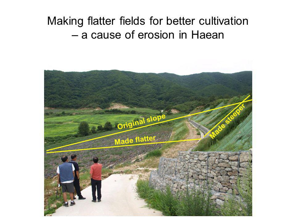 Making flatter fields for better cultivation – a cause of erosion in Haean
