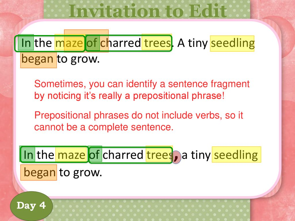4th Grade / Prepositional Phrases - ppt download