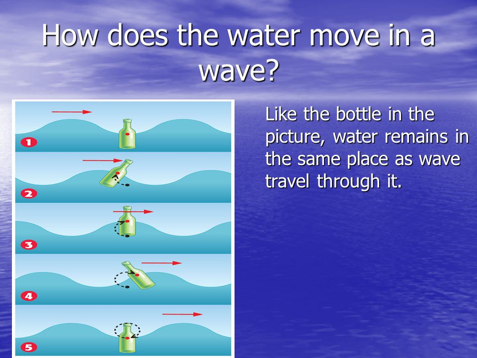 How does the water move in a wave