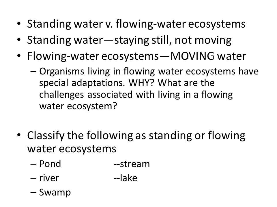Standing water v. flowing-water ecosystems