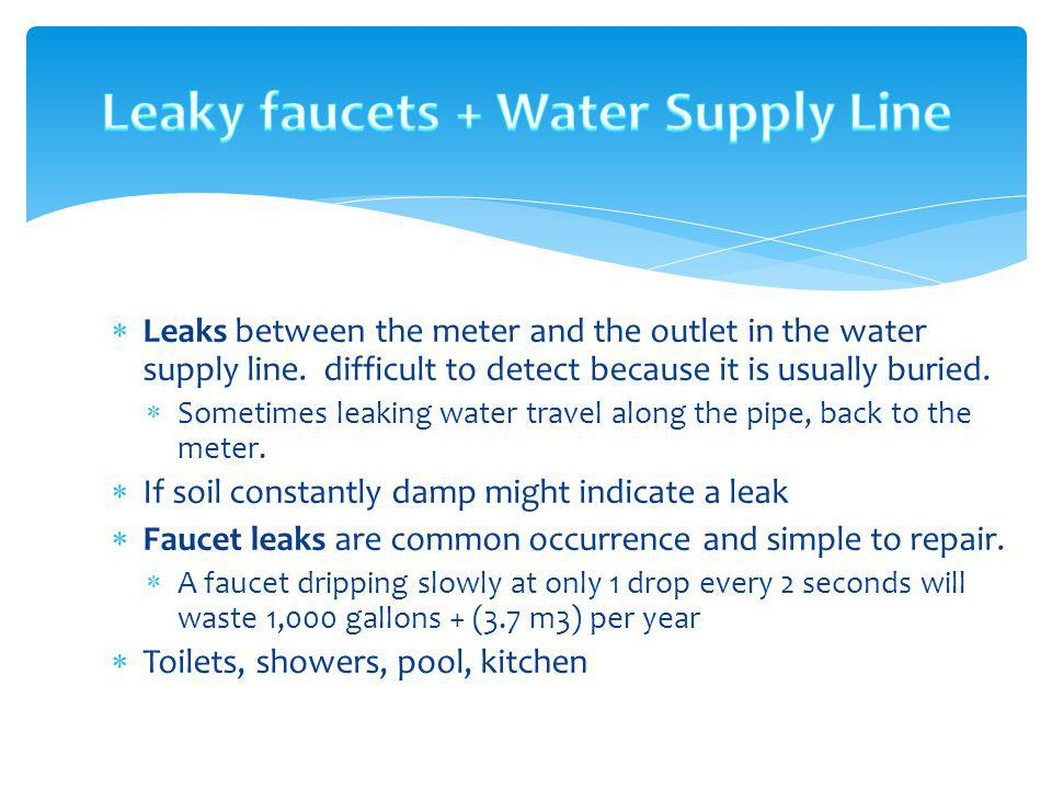 Leaky faucets + Water Supply Line