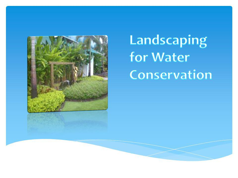 Landscaping for Water Conservation