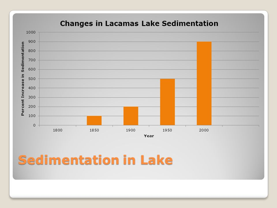 Sedimentation in Lake