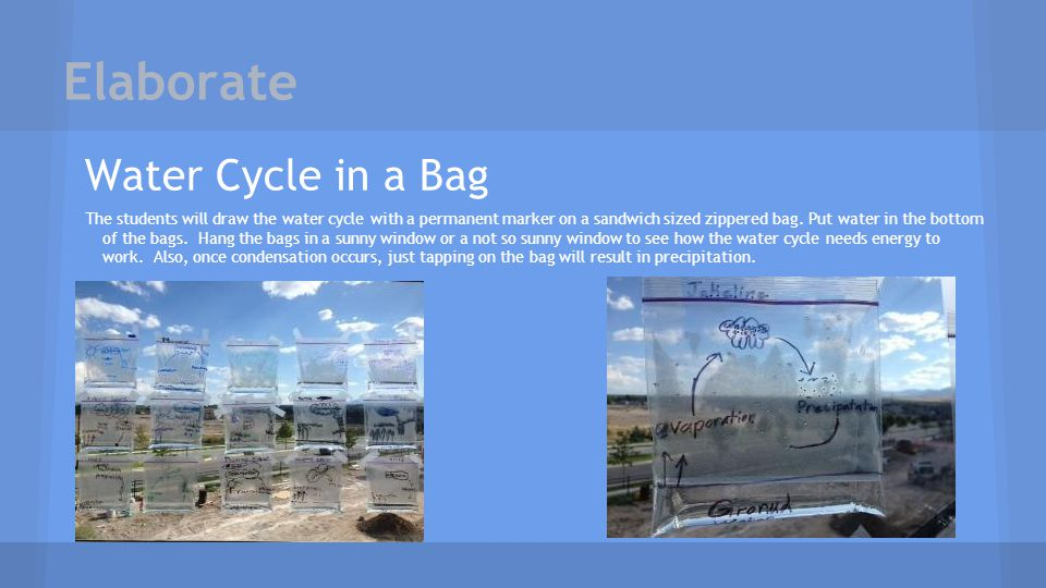 Elaborate Water Cycle in a Bag