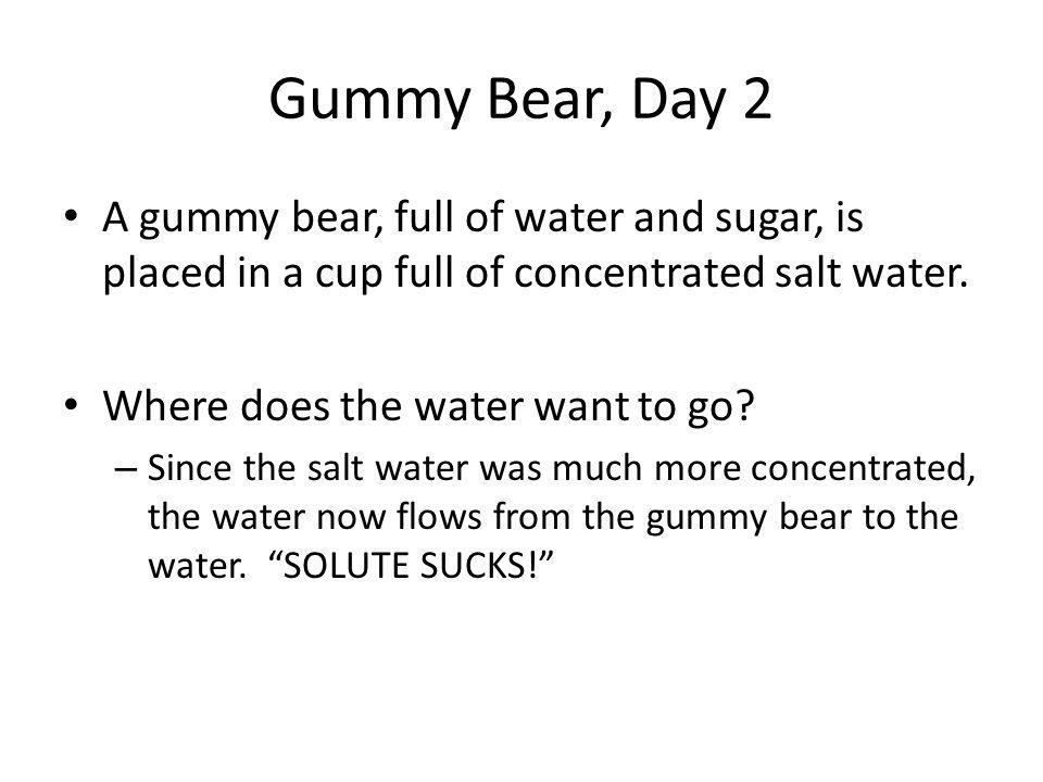 Gummy Bear, Day 2 A gummy bear, full of water and sugar, is placed in a cup full of concentrated salt water.
