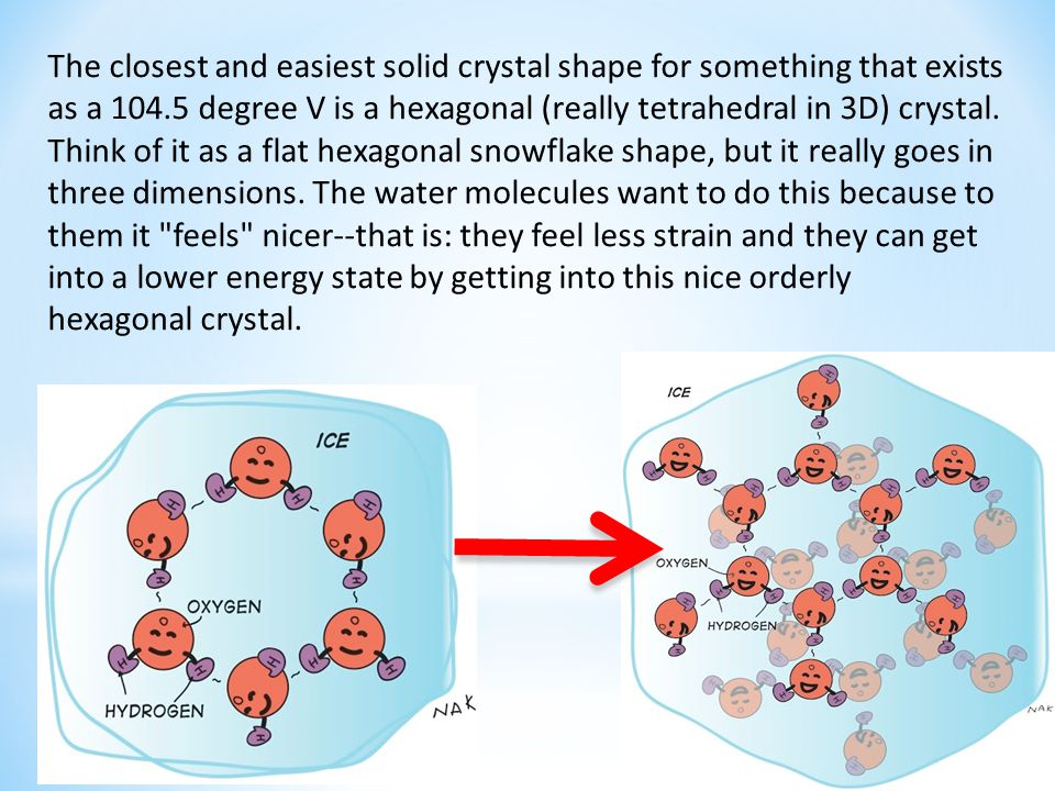 The closest and easiest solid crystal shape for something that exists as a 104.5 degree V is a hexagonal (really tetrahedral in 3D) crystal.