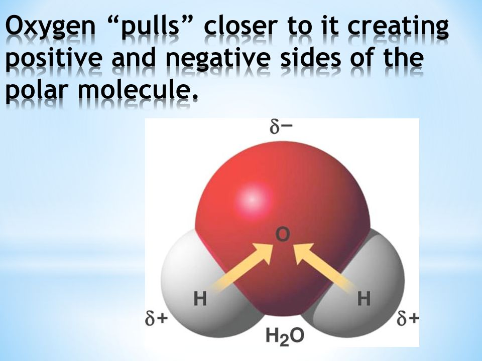 Oxygen pulls closer to it creating positive and negative sides of the polar molecule.
