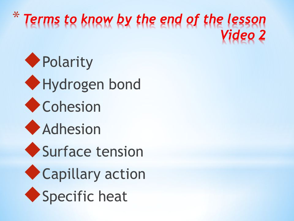 Terms to know by the end of the lesson Video 2