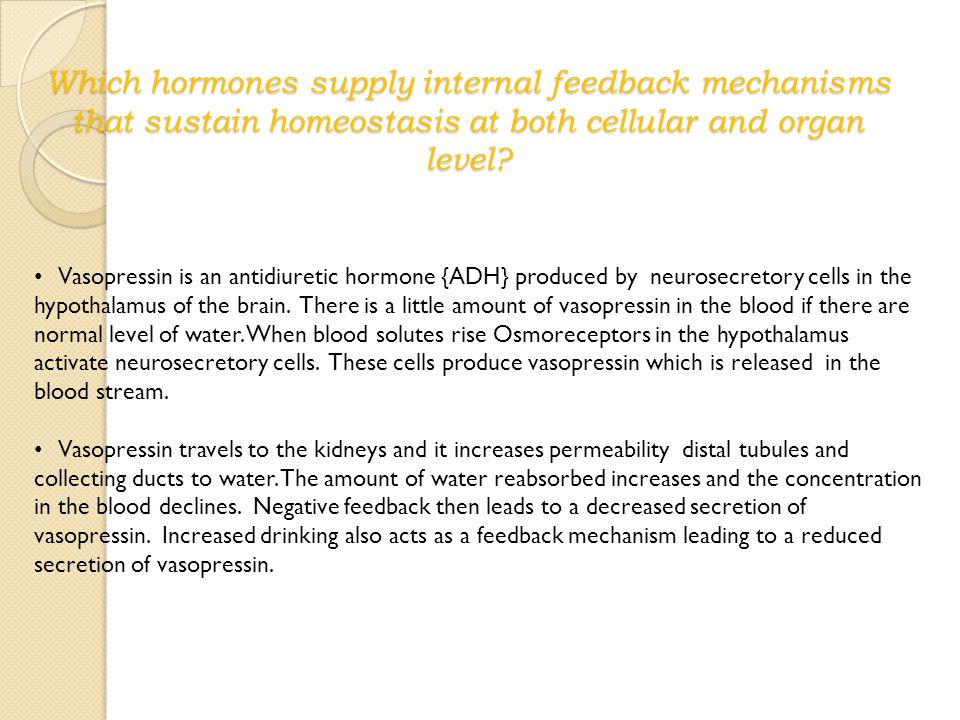Which hormones supply internal feedback mechanisms that sustain homeostasis at both cellular and organ level