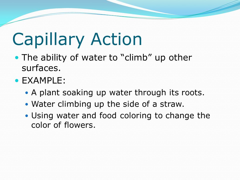Capillary Action The ability of water to climb up other surfaces.