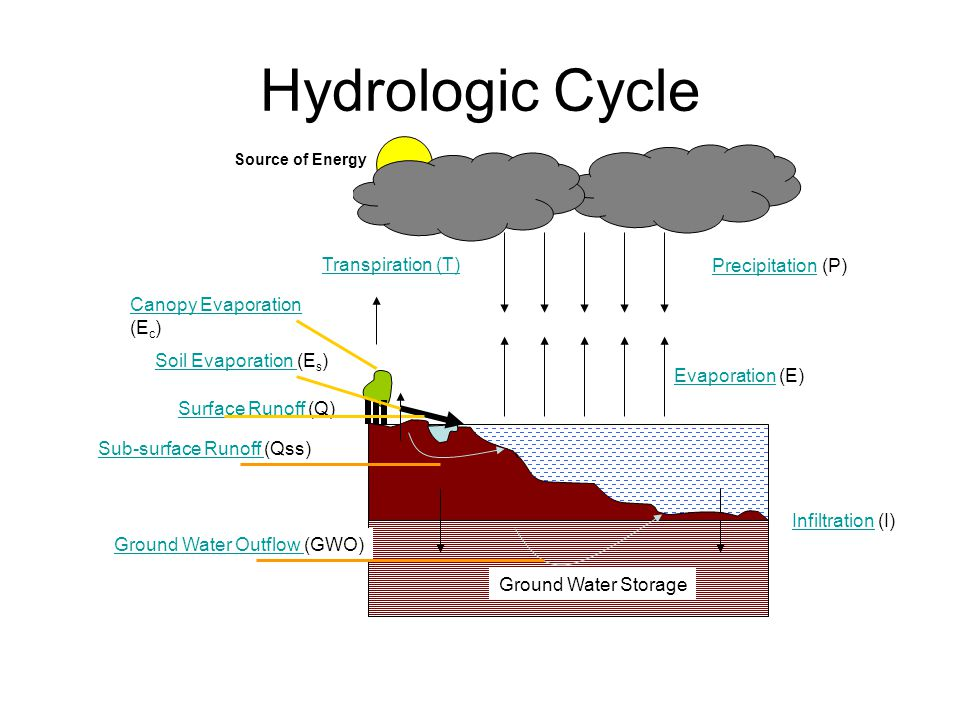 Hydrologic Cycle Transpiration (T) Precipitation (P)