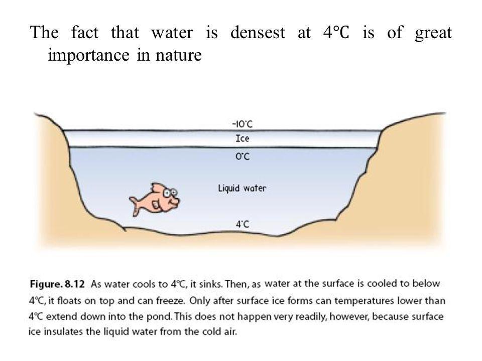 The fact that water is densest at 4℃ is of great importance in nature