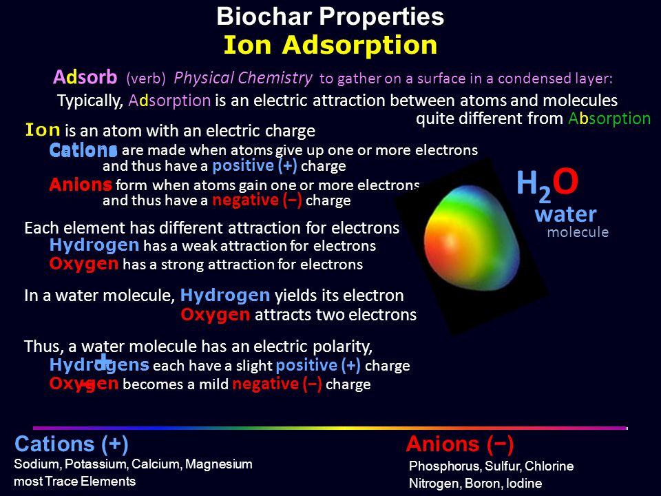 H2O + + Biochar Properties Ion Adsorption water − −