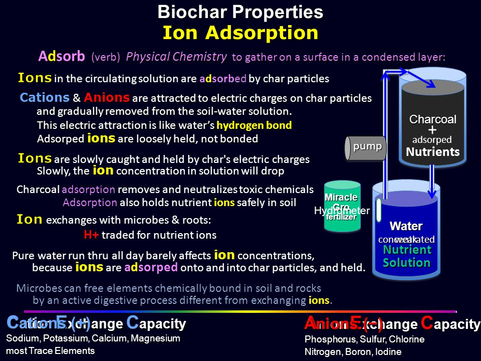 Cation Exchange Capacity Anion Exchange Capacity