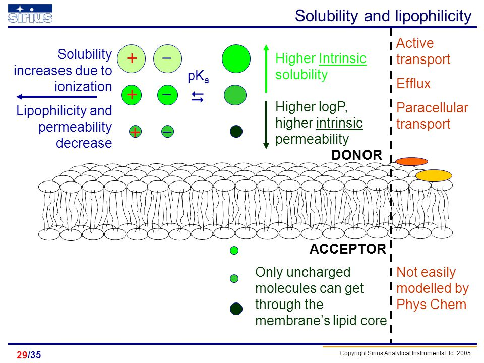 Solubility and lipophilicity