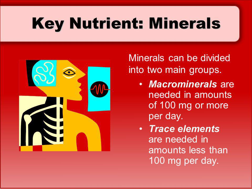 Key Nutrient: Minerals