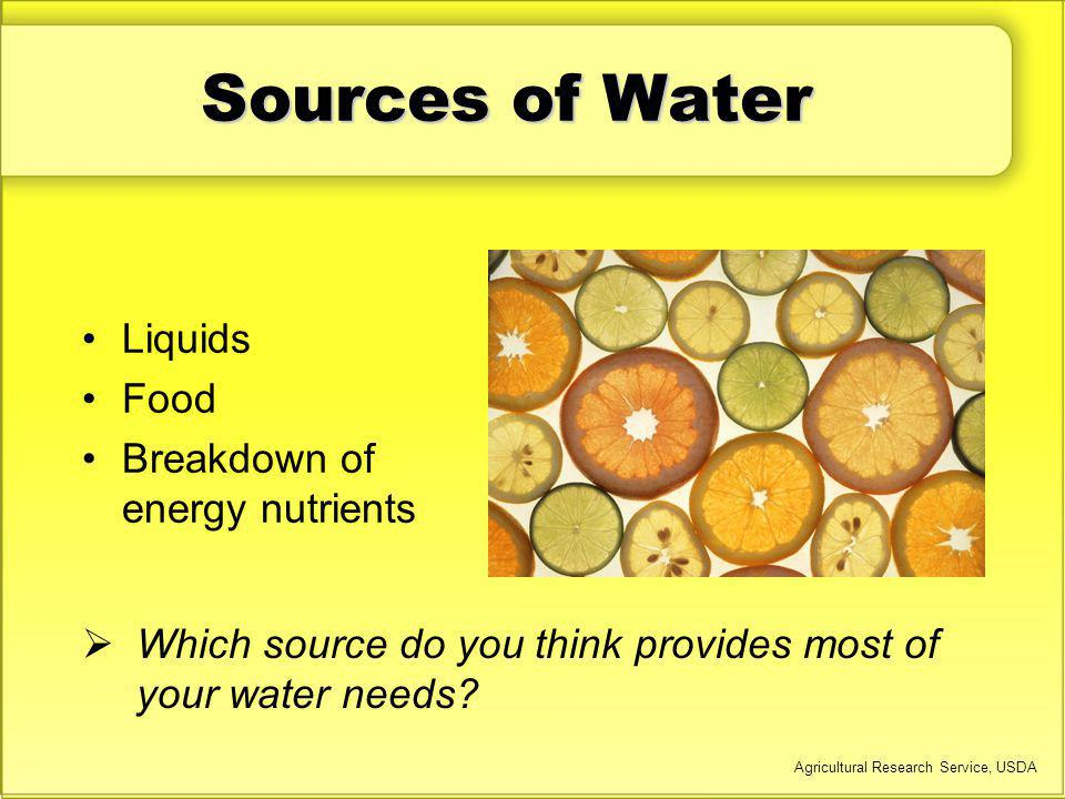 Sources of Water Liquids Food Breakdown of energy nutrients