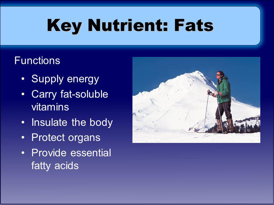 Key Nutrient: Fats Functions Supply energy Carry fat-soluble vitamins