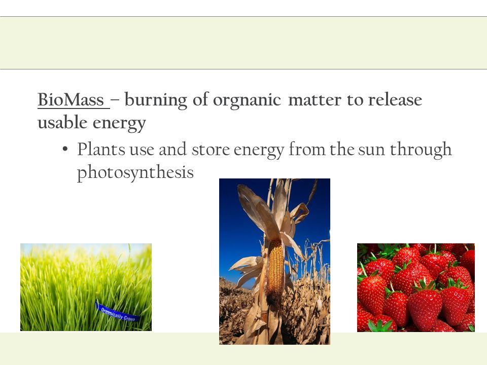 BioMass – burning of orgnanic matter to release usable energy