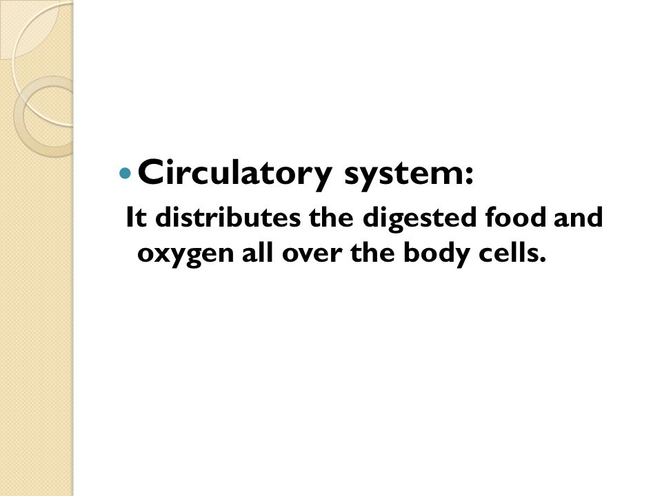 Circulatory system: It distributes the digested food and oxygen all over the body cells.