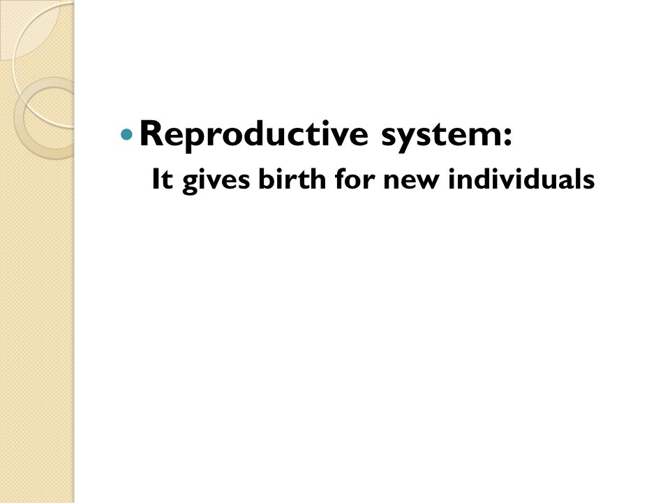 Reproductive system: It gives birth for new individuals