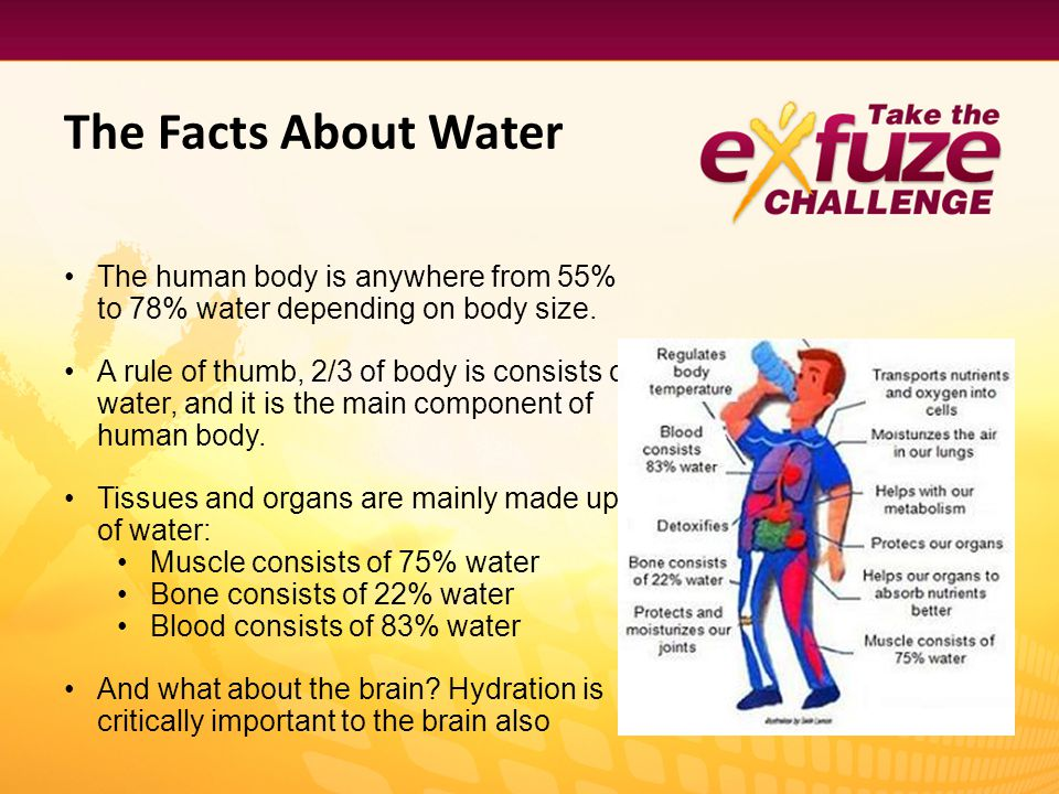 The Facts About Water The human body is anywhere from 55% to 78% water depending on body size.