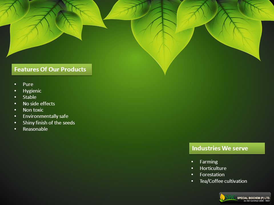 Features Of Our Products