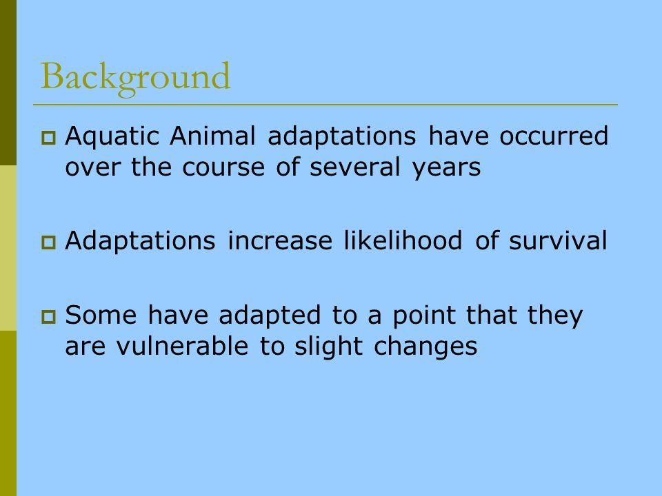 Background Aquatic Animal adaptations have occurred over the course of several years. Adaptations increase likelihood of survival.