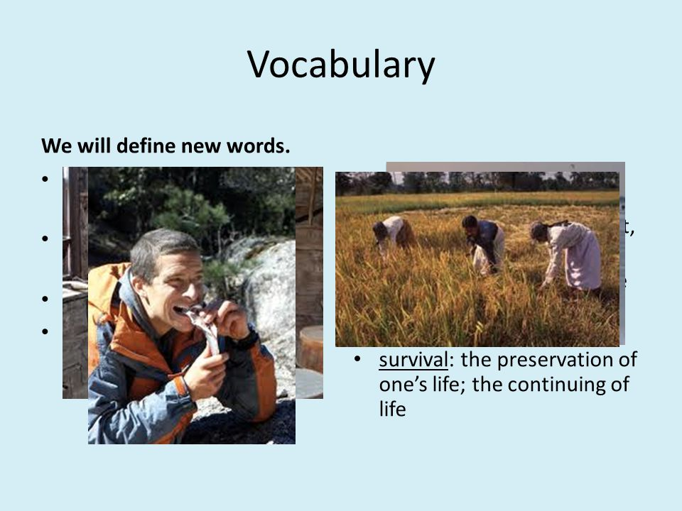 Vocabulary We will define new words. cache: a hidden store of goods