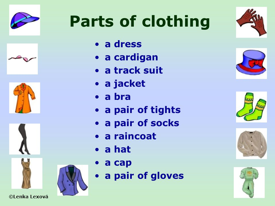 Parts of clothing a dress a cardigan a track suit a jacket a bra