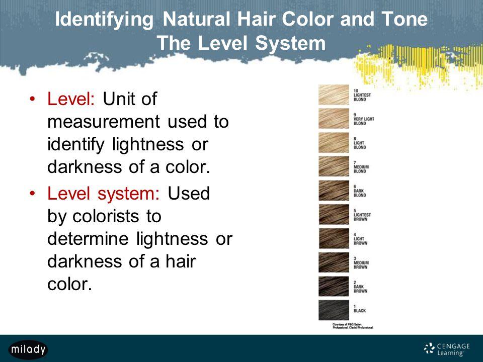 Miladys standard cosmetology chp 6 - Homework Example
