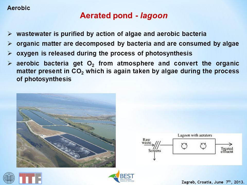 Aerobic Aerated pond - lagoon. wastewater is purified by action of algae and aerobic bacteria.