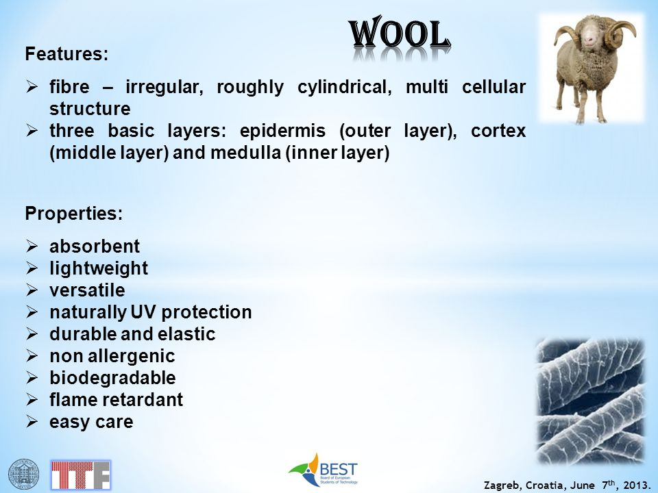 WOOL Features: fibre – irregular, roughly cylindrical, multi cellular structure.