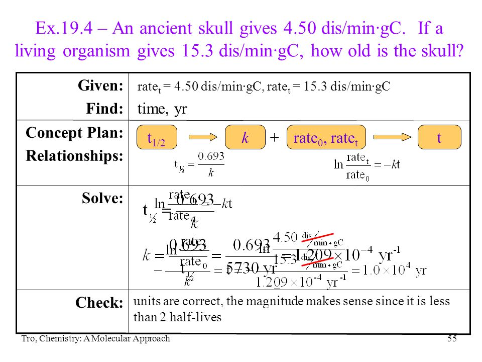 Ex. 19. 4 – An ancient skull gives 4. 50 dis/min∙gC