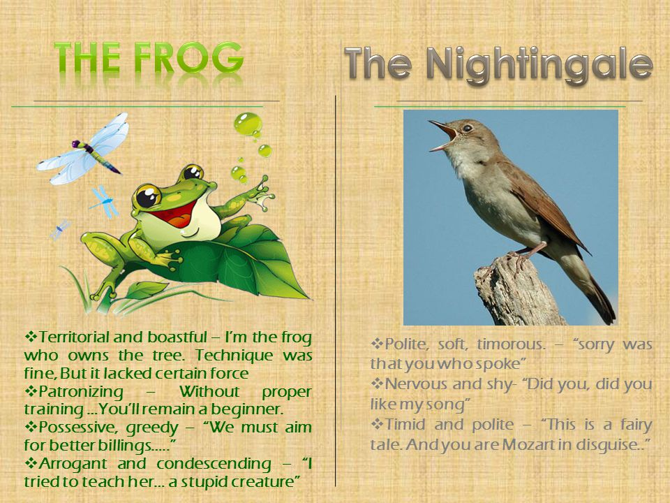 The Frog The Nightingale