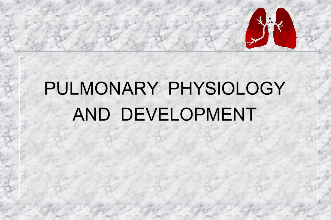 PULMONARY PHYSIOLOGY AND DEVELOPMENT