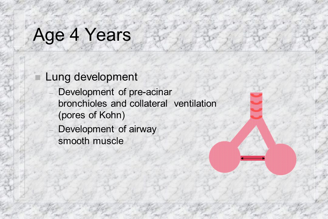 Age 4 Years Lung development