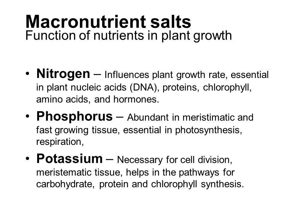 Macronutrient salts Function of nutrients in plant growth