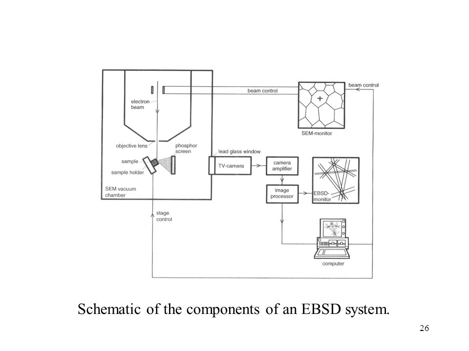Schematic of the components of an EBSD system.