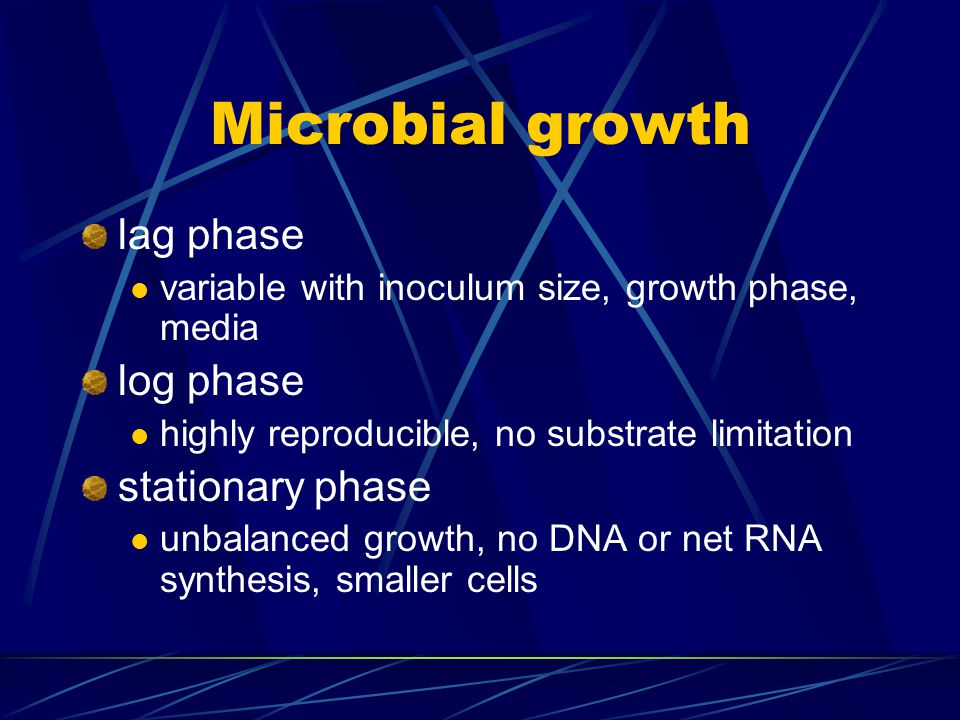 Microbial growth lag phase log phase stationary phase