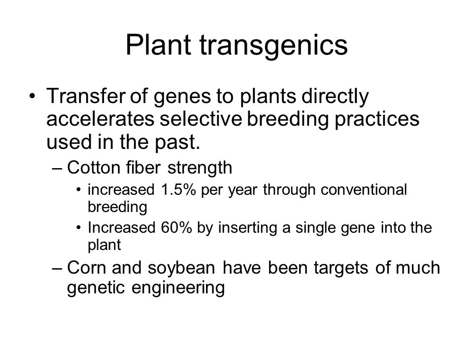 Plant transgenics Transfer of genes to plants directly accelerates selective breeding practices used in the past.