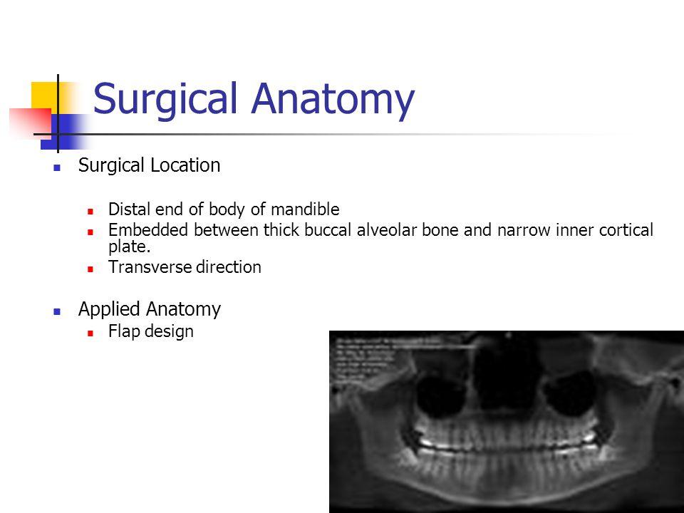 Technique Surgical Anatomy Procedure Basics Perioperative Management