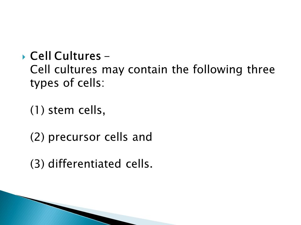 Cell Cultures - Cell cultures may contain the following three types of cells: (1) stem cells, (2) precursor cells and (3) differentiated cells.