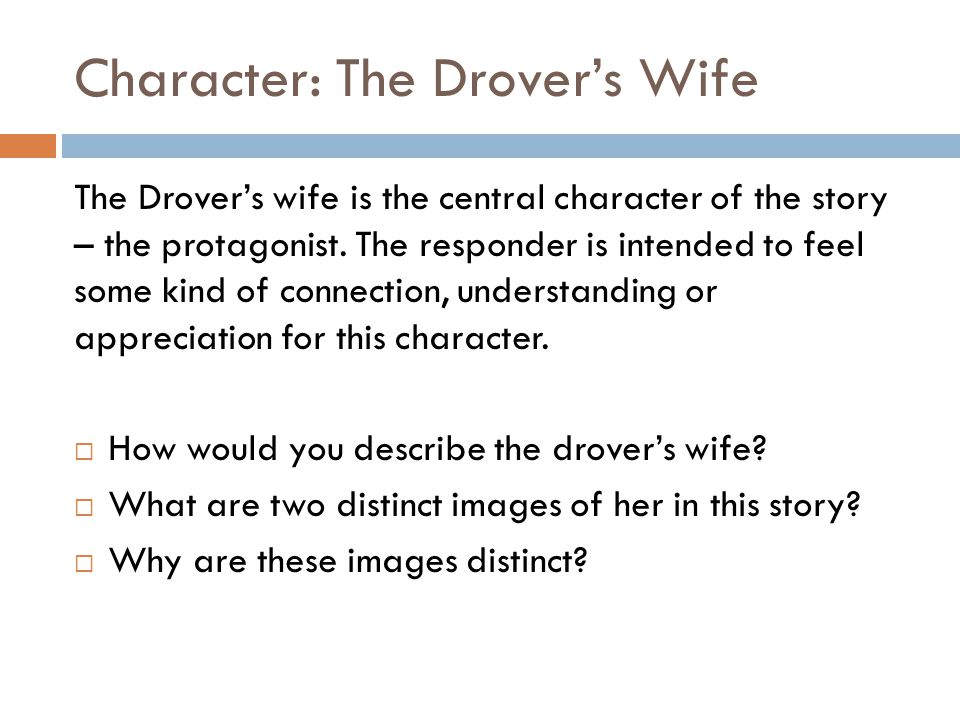 Character: The Drover's Wife