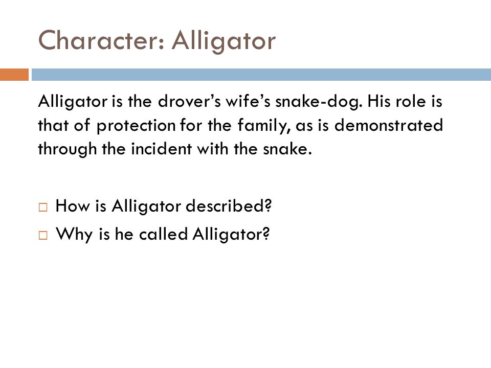 Character: Alligator