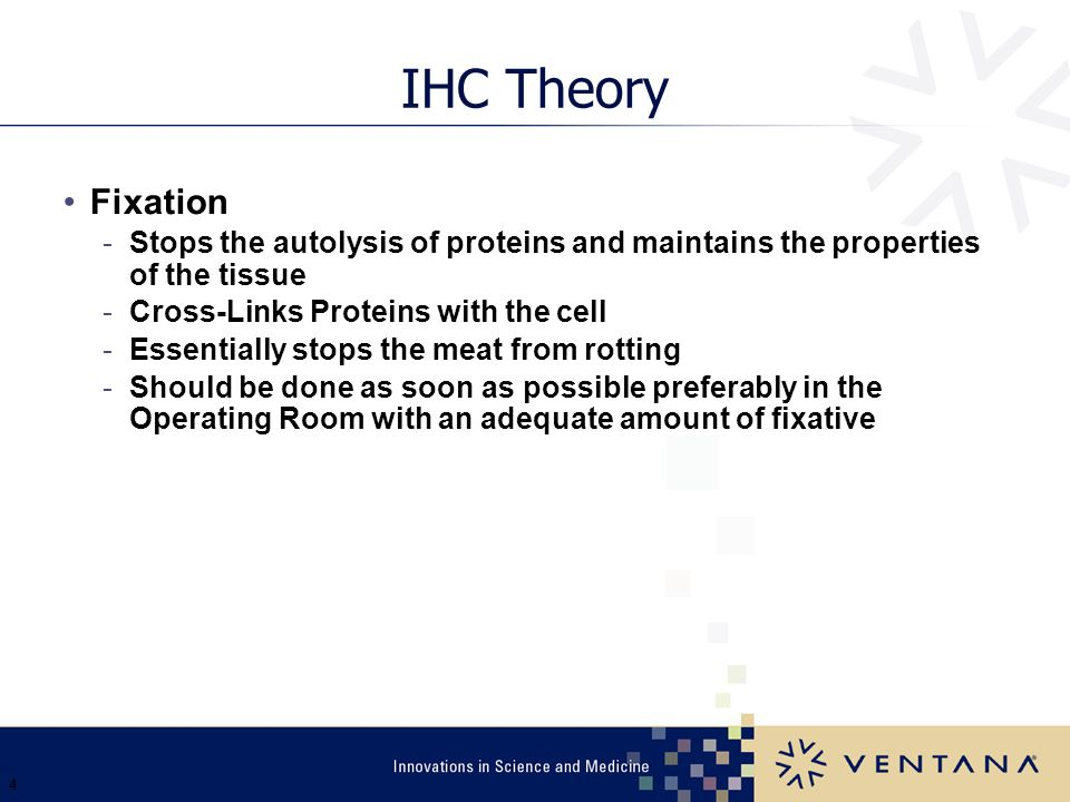 Ventana 3/31/2017. IHC Theory. Fixation. Stops the autolysis of proteins and maintains the properties of the tissue.