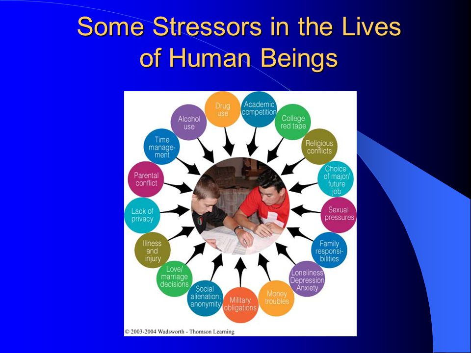 Some Stressors in the Lives of Human Beings