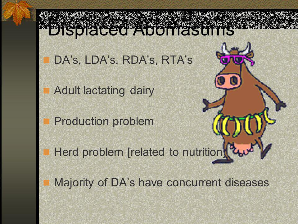 Displaced Abomasums DA's, LDA's, RDA's, RTA's Adult lactating dairy