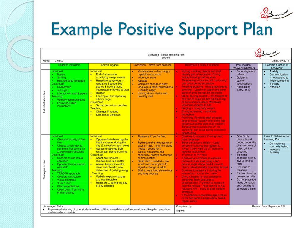 Positive Support Plans Ppt Download